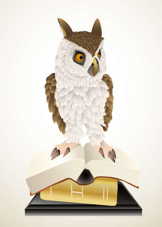 owl and books Vector