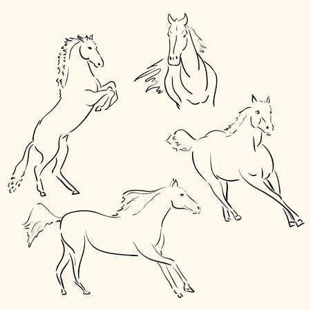caballos arte lineal  Ilustración de vector