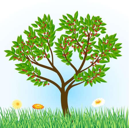 citrus tree: abstractos �rboles con frutas
