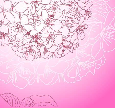cherry blossom line art pink background Vector