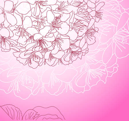 cherry blossom line art pink background Vector