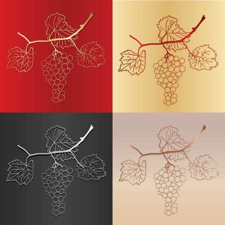 uva y la vid con variaciones de color