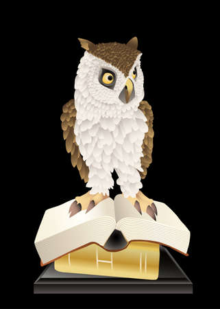 owl and books Stock Vector - 12448851