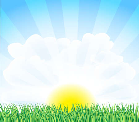 sunny landscape with green grass Stock Vector - 12448980