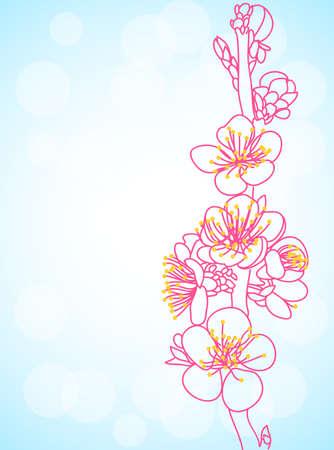 sakura flowers Stock Vector - 13160031