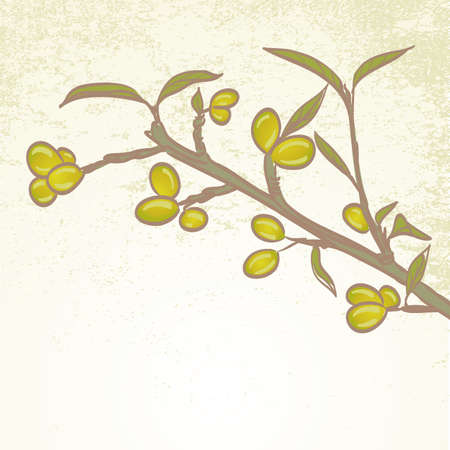 brunch: olives on brunch with leaves Illustration