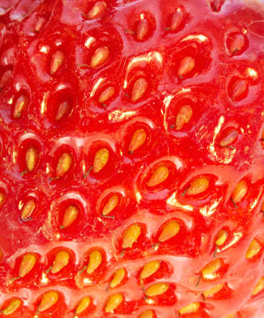 strawberry extreme close-up as background Stock Photo - 14132275