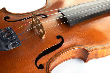 stringed: violin shot