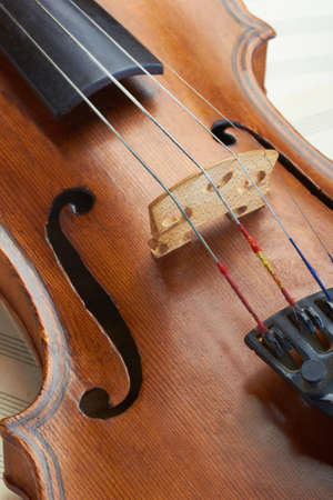 old violin details photo
