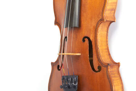 violin body on white photo