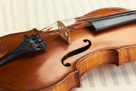 stringed: violin body