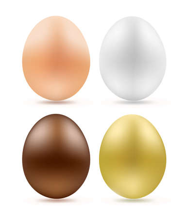 set of eggs simple chocolate and golden on white Stock Vector - 17690133