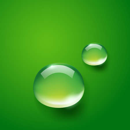 dewdrops: water drops on green  Illustration