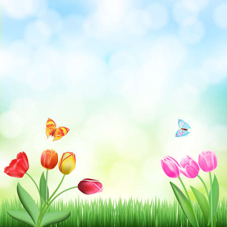 spring background with grass,tulips and butterflies Illustration