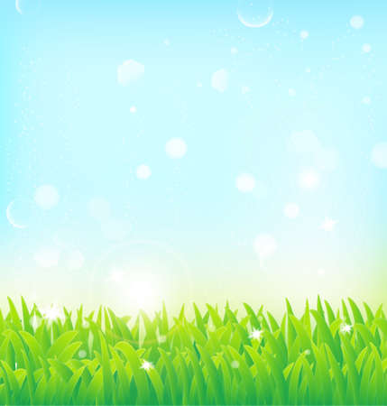 spring background with grass and light effects  Illustration