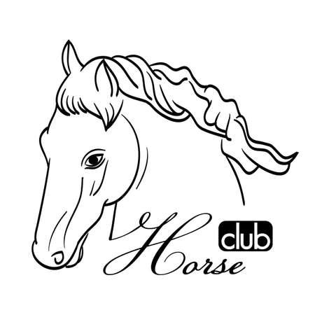 pony ride: hand drawn horse head on white as symbol of club
