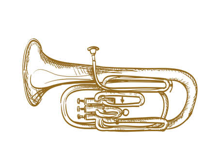 hand drawn baritone horn  Vector