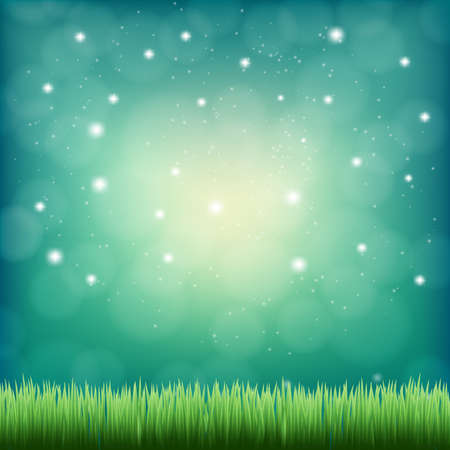 field and sky: green grass under the night fantasy sky