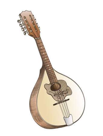 mandolin: mandolin hand drawing  on white