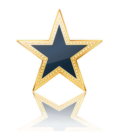 dark blue star with golden frame on white Vector