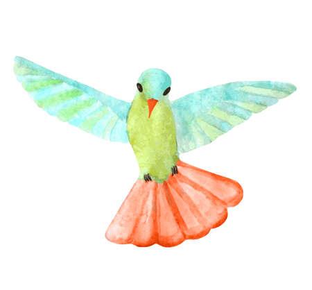 カラフルな水彩とハチドリ オープンの翼  イラスト・ベクター素材