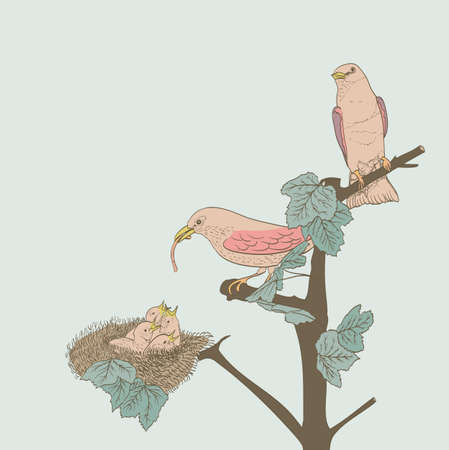 nestling birds: hand drawn little birds feeding their young in the nest Illustration