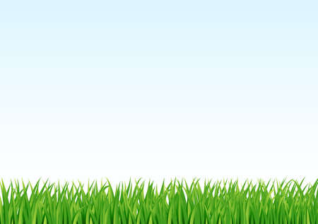 lawn: green grass background