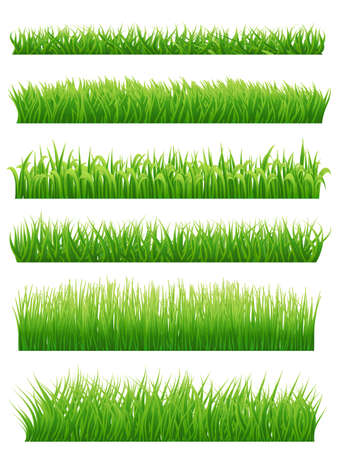 Green grass borders set on white. Vector illustration