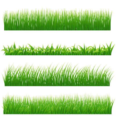 grass land: Green grass borders set on white. Vector illustration