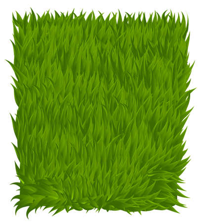 grass texture: Green grass texture rectangle isolated on white. Vector illustration