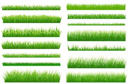 Conjunto de fronteras horizontales de la hierba verde de la primavera. recogida de hierba verde sobre fondo blanco para su diseño. Elementos de diseño de paisaje natural con hierba. Varios tipos de hierba verde. Vector