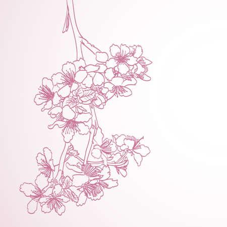 flor de cerezo: florecimiento del árbol de la línea de arte ilustración dibujo a mano. primavera de fondo horizontal elegante de color rosa con flores de ciruela vector Vectores