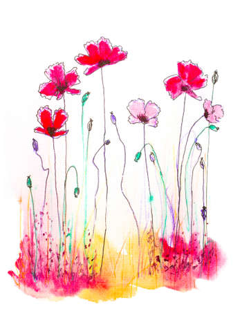 picturesque: watercolor and ink hand drawn illustration of poppies on white