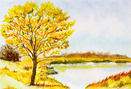 etude: watercolor landscape background with autumn tree, lake, bushes and sky