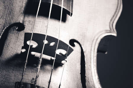 hand crafted: monochrome image of hand crafted violin closeup
