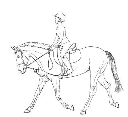 cavallo arte disegno Line Rider. Sport equestri tema di formazione illustrazione. vettore