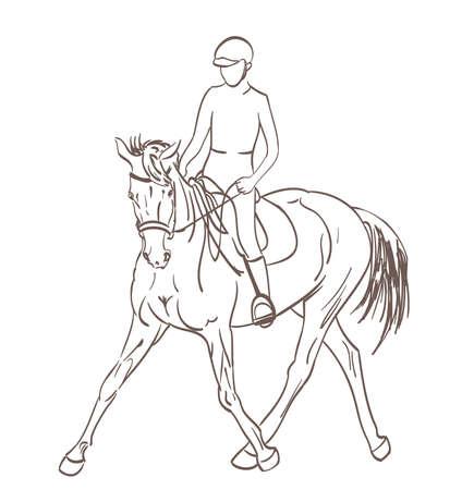 cavallo Sketch Rider. formazione equestre illustrazione tema vettoriale
