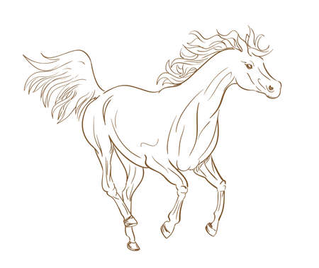 running horse outline in line art style Illustration