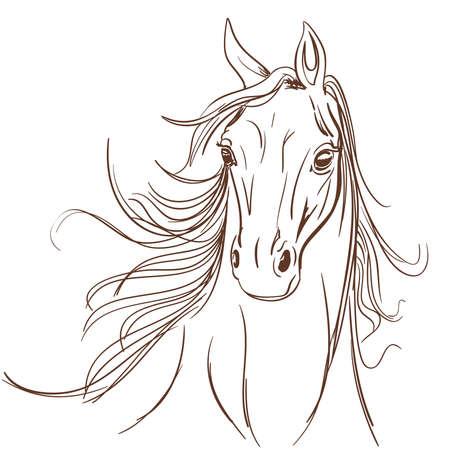 Hoofd van het paard maakte in de lijn art stijl. Equestrian school of club symbool.