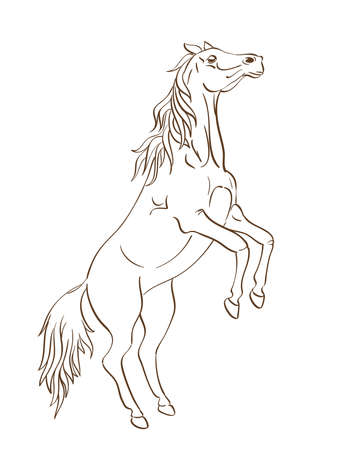 Rearing up horsein line art style Illustration