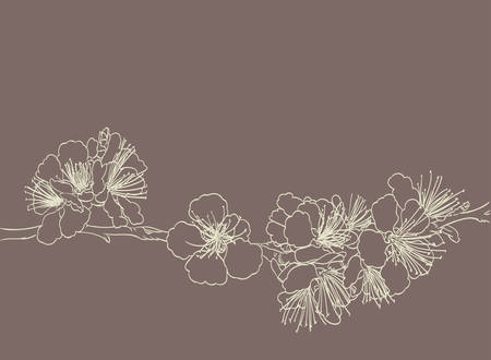 cherry tree: blossoming tree line art hand drawing. spring stylish background with sakura flowers outline