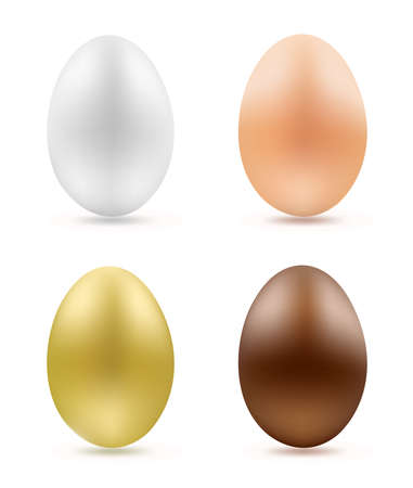 brown egg: set of eggs on white illustration Illustration