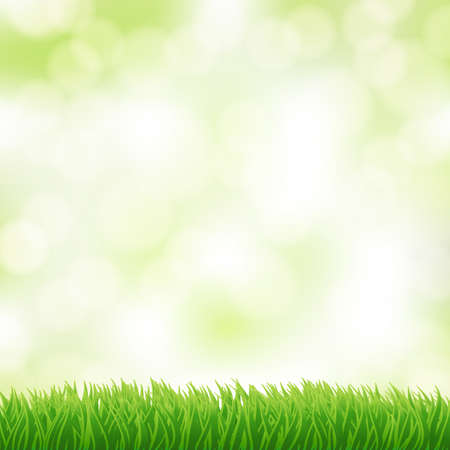 green grass background with blurry light in the sky