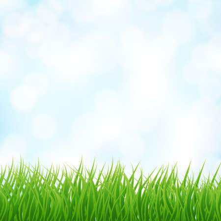 light blue sky and green grass background. Stock Illustratie