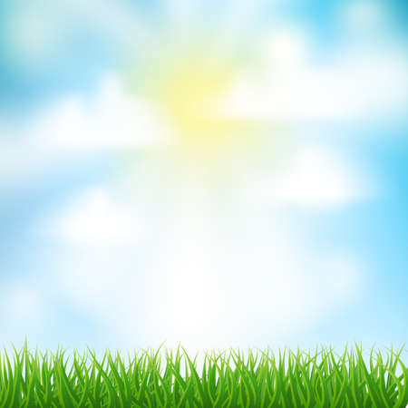 grass and sky: spring background with grass,sky and clouds
