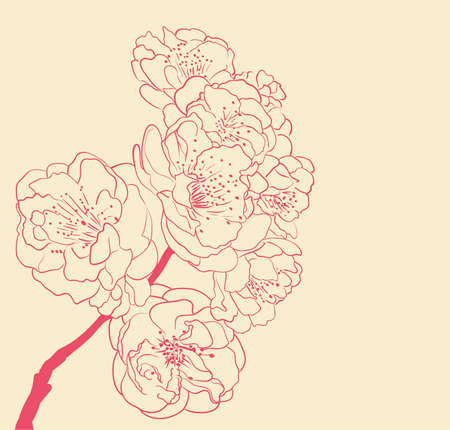 blossoming tree line art hand drawing. spring background with flowers outlines