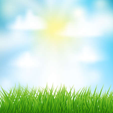 background with green grass and sun and clouds for Your design template. vector