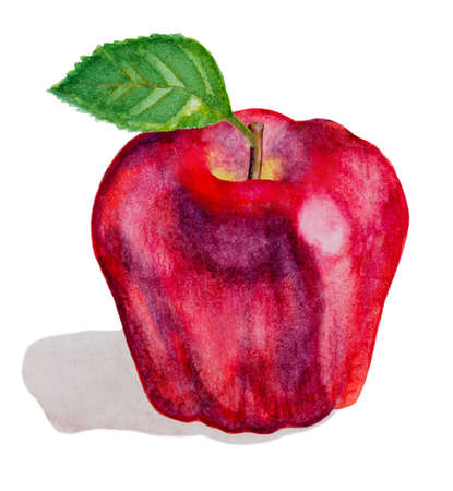 apple leaf: red watercolor apple fruit with green leaf on white Stock Photo