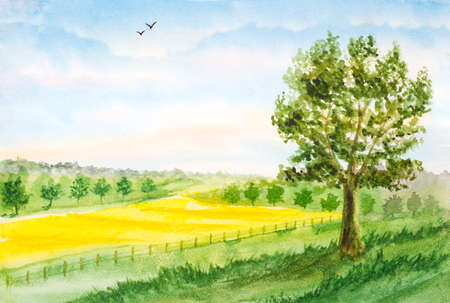 field and sky: watercolor landscape background with summer field, trees, sky with clouds
