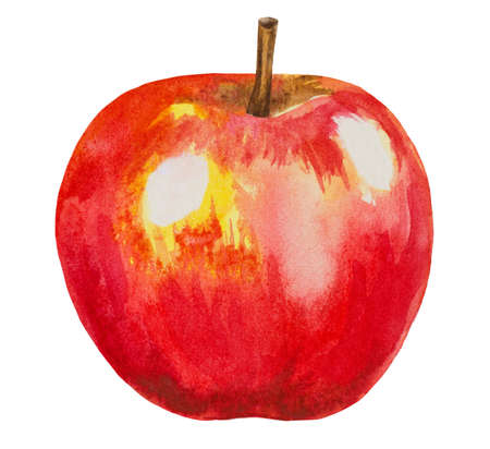 apple isolated: red watercolor apple illustration isolated on white Stock Photo
